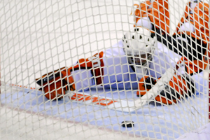 RIT's Louis Menard can do nothing as the puck enters the net (photo: Angelo Lisuzzo).