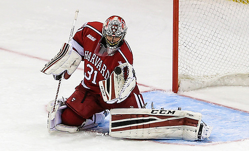 March 19, 2016:  Harvard Crimson goalie Merrick Madsen (31) watches puck as it approaches his glove during 2016 ECAC Tournament Championship game between Harvard University and Quinnipiac University at Herb Brooks Arena in Lake Placid, NY. (John Crouch/J. Alexander Imaging)